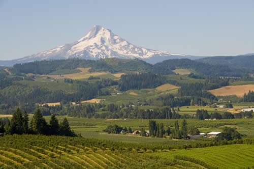 photo of Oregon's Mount Hood from Hood River