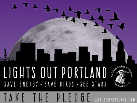 Lights Out Portland promotional graphic